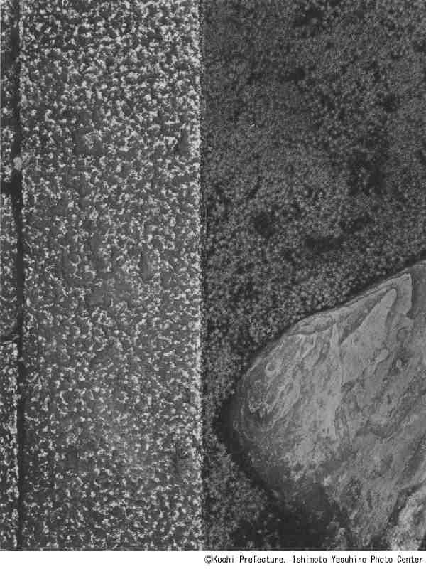 【9】石元泰博《桂離宮 御輿寄前庭 延段と飛石》1953,54年、高知県立美術館蔵